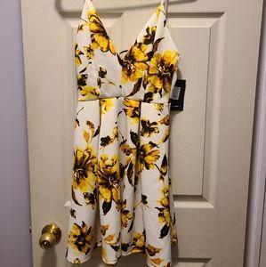NWT Fashion Nova Summer dress